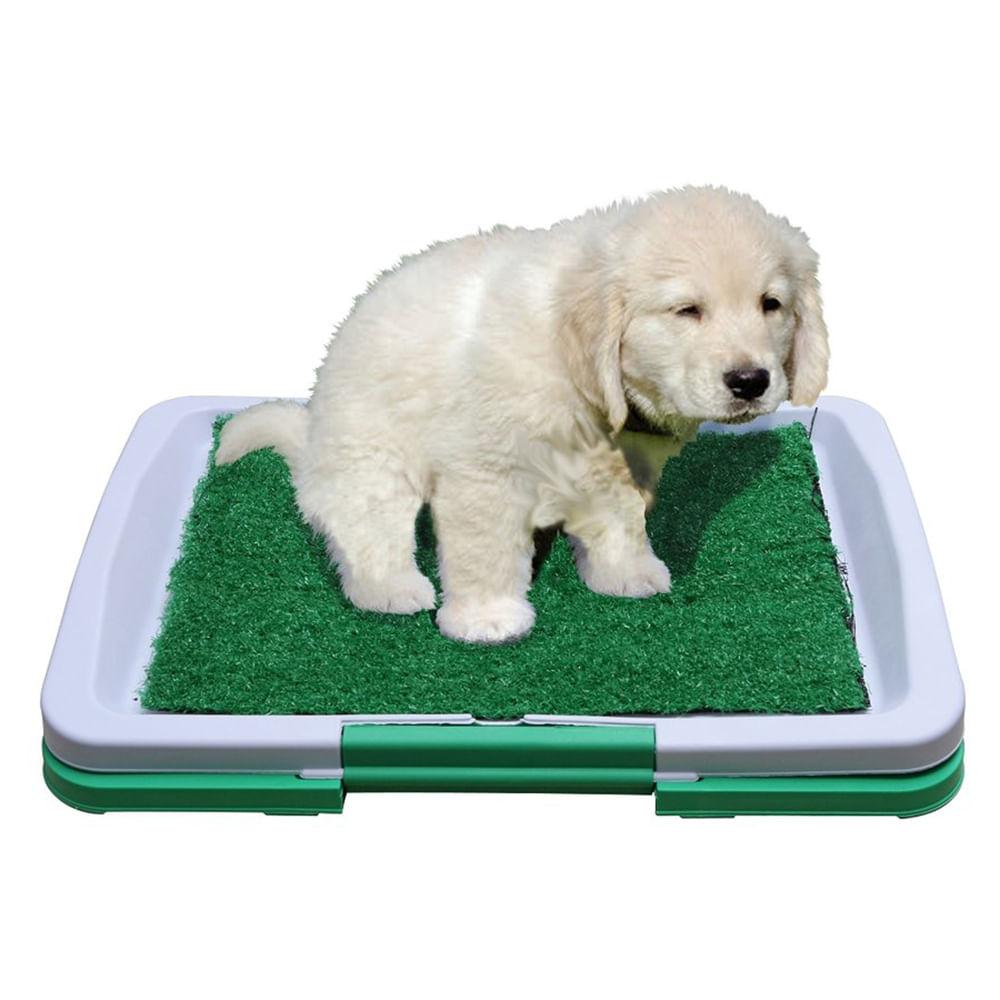 Tapete Para Perro Puppy Potty Pad Baño Portatil   Éxito ...